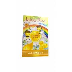 Jalea Real Infantil 12 Stick 10ml